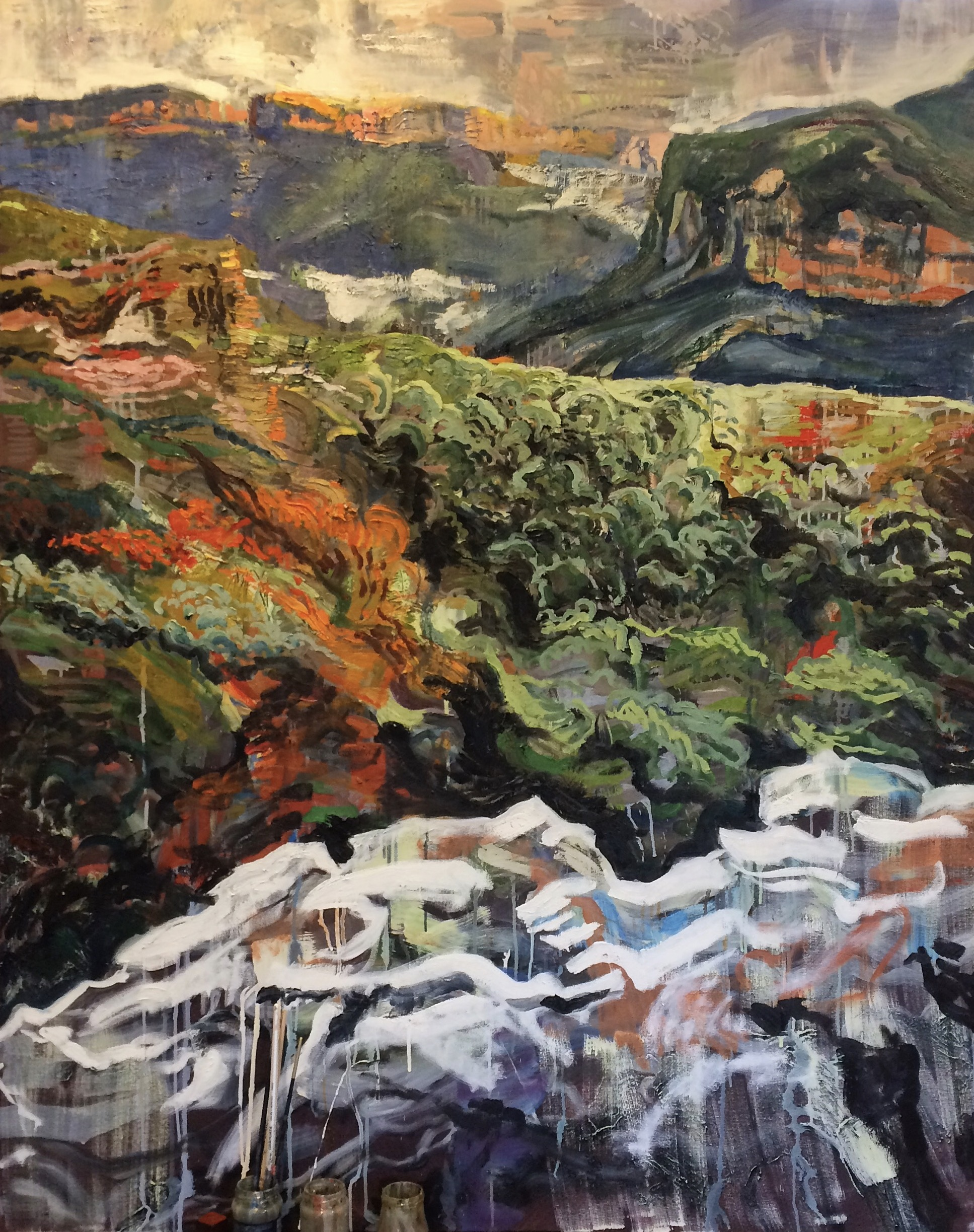 Mt Hay Rock Pools and Cliffs, 2017