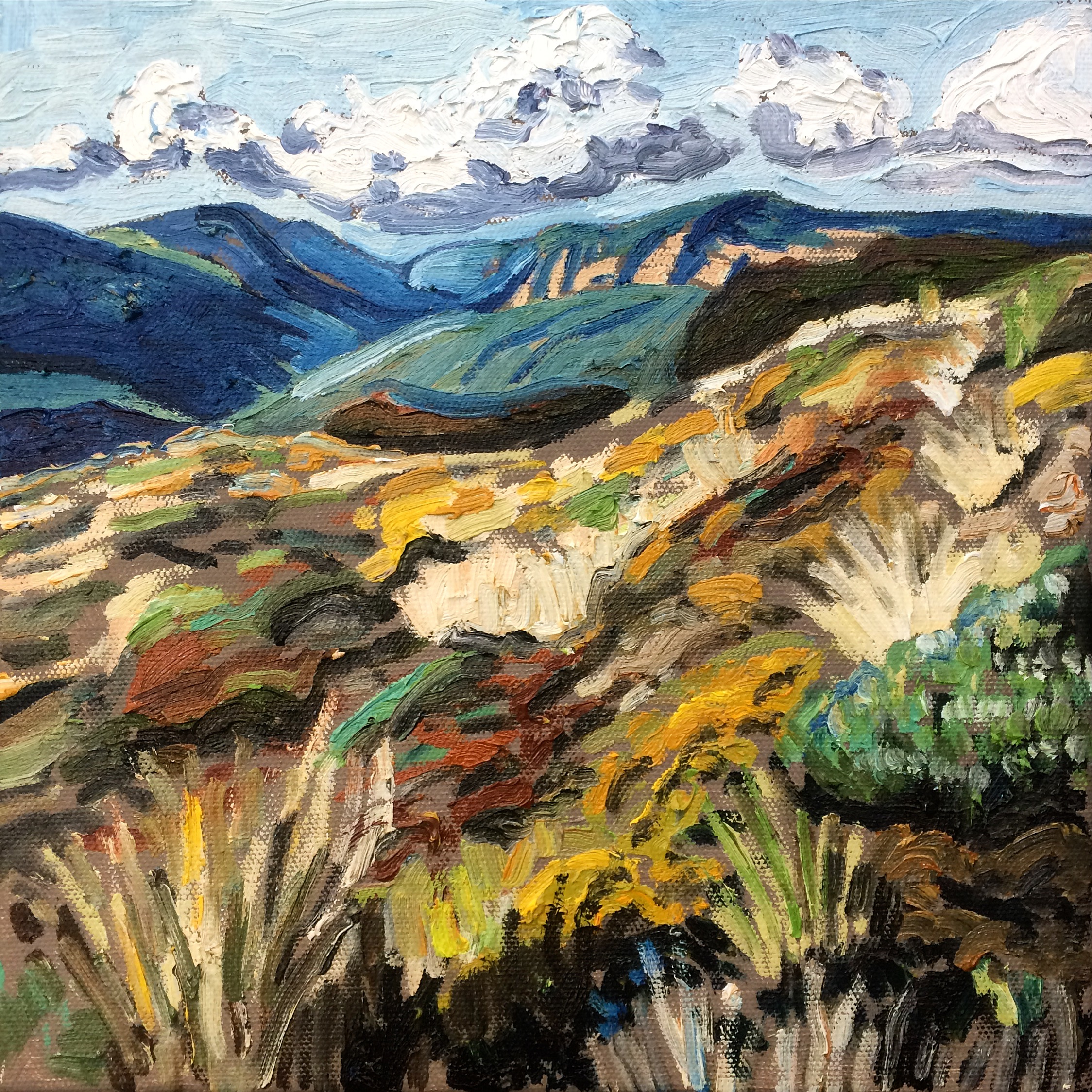 Mt Hay Heath Study, 2016