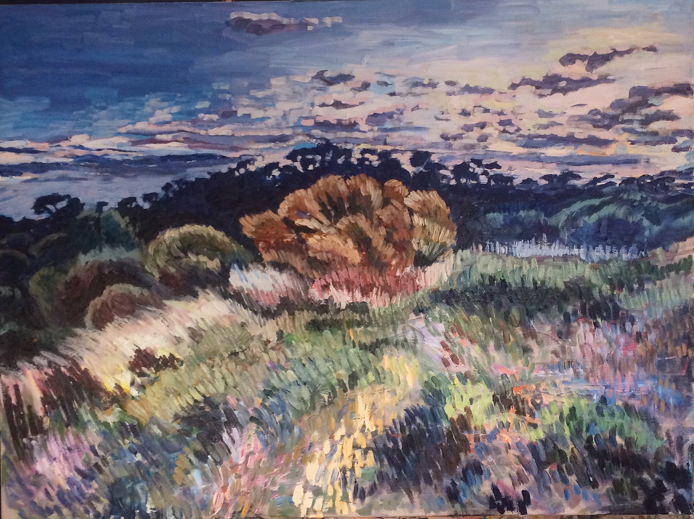 King's Tableland Twilight, 2016
