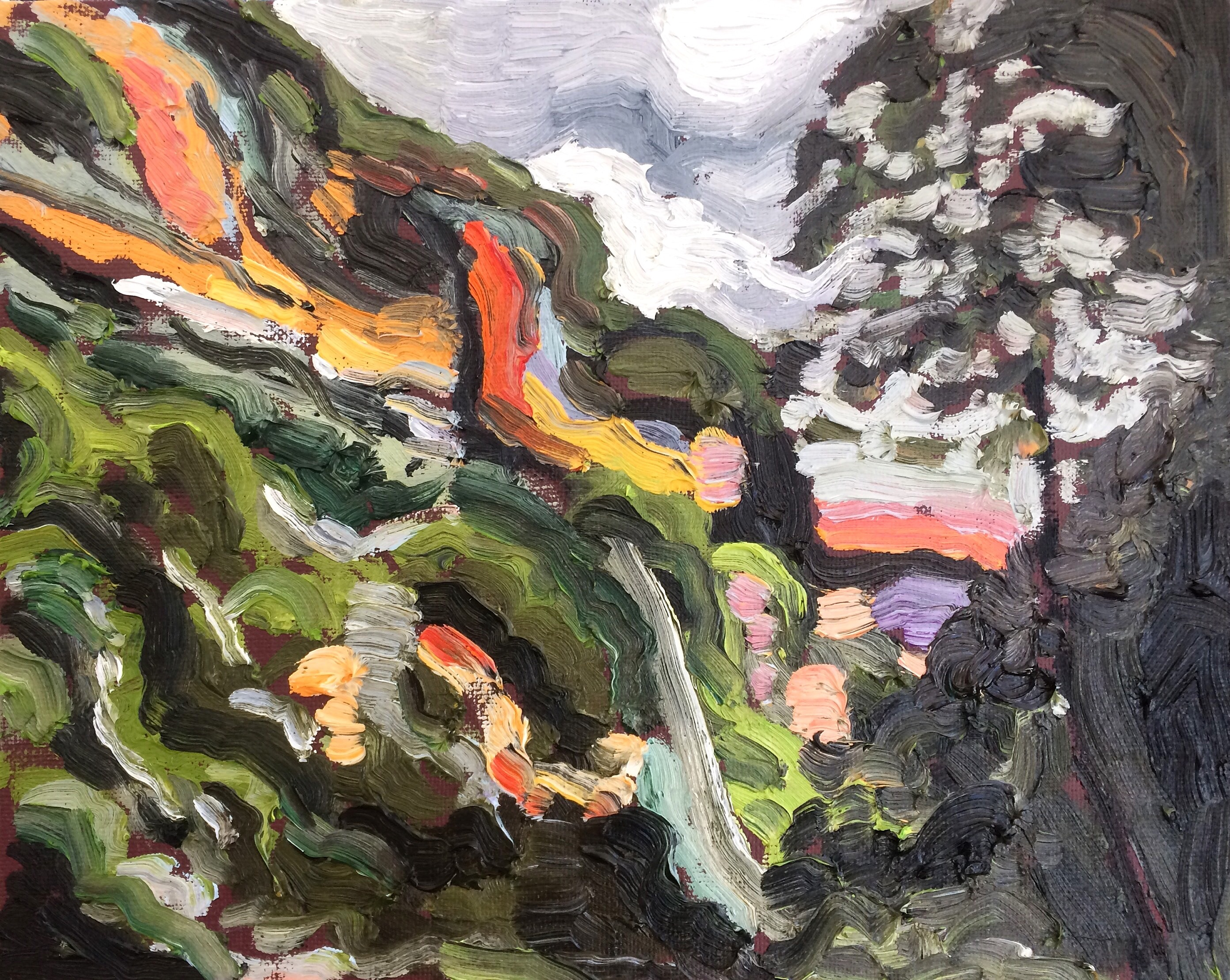 Leura Cliffs, 2017