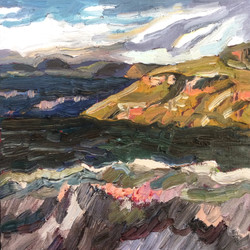 Mt Hay Study, 2017