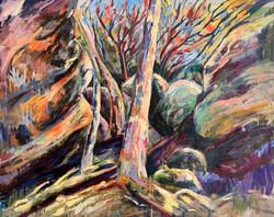 Goulburn River Rocks and Trees