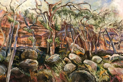 Goulburn River Gums