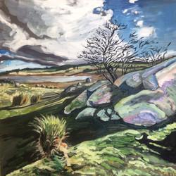 Oberon Dam Rocks and Shadows, 2016