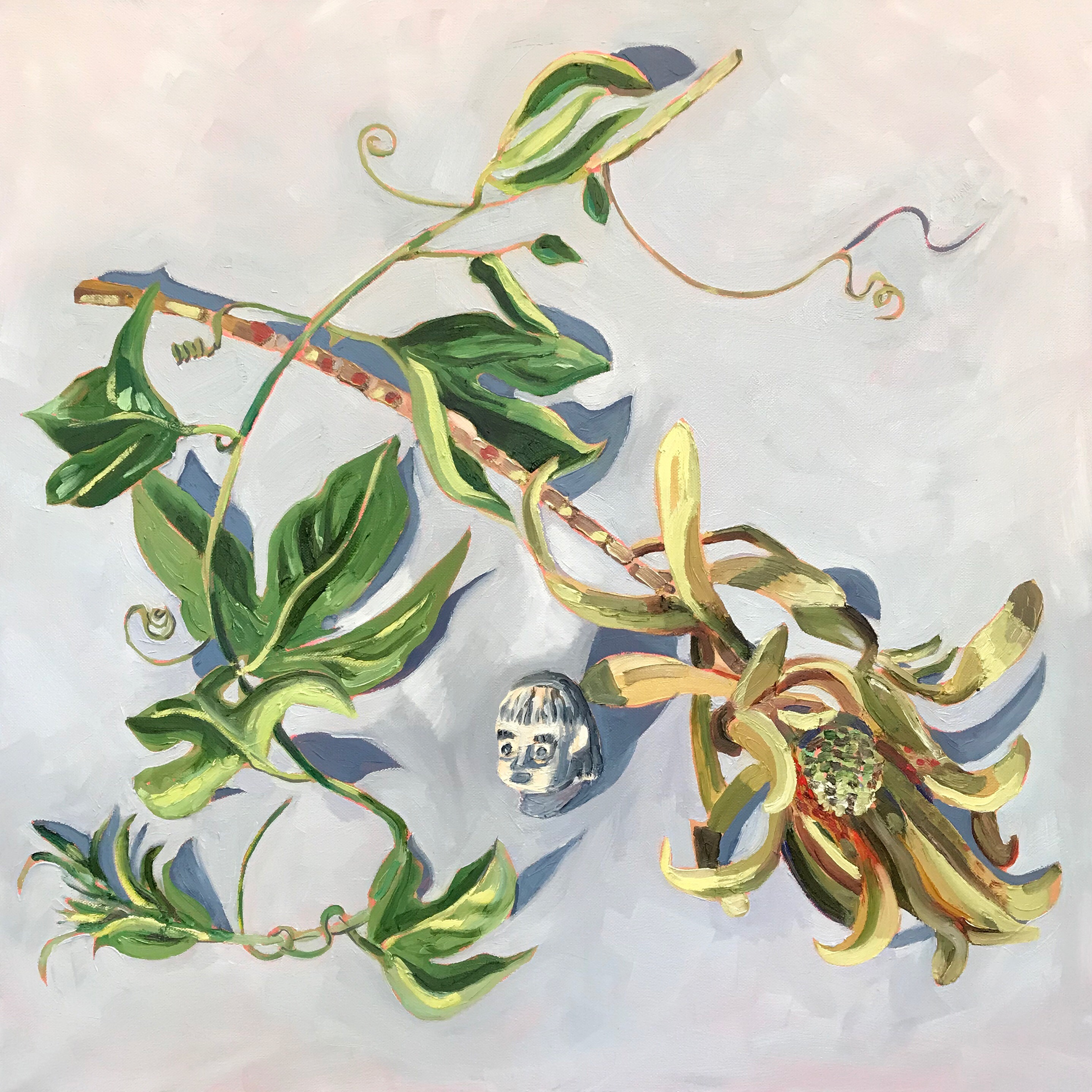 Passion Vine and Dried Protea