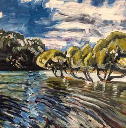 Bundeena Mangroves, 2016