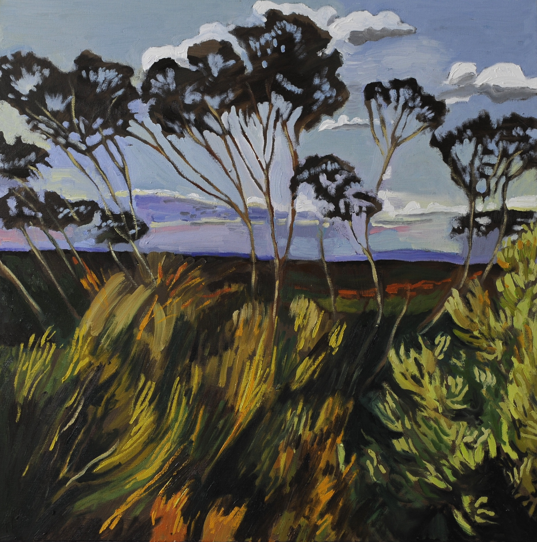 The View King's tableland, 2016