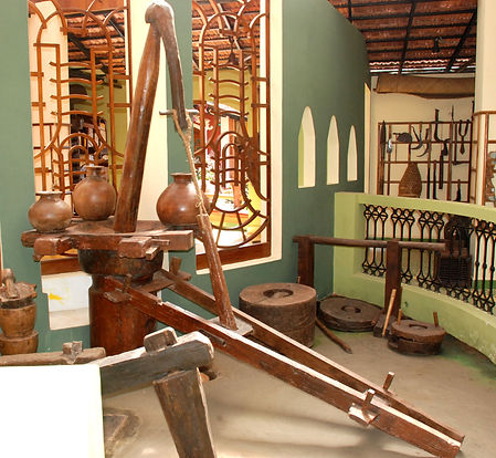 Coconut oil extractor and dehusking mill