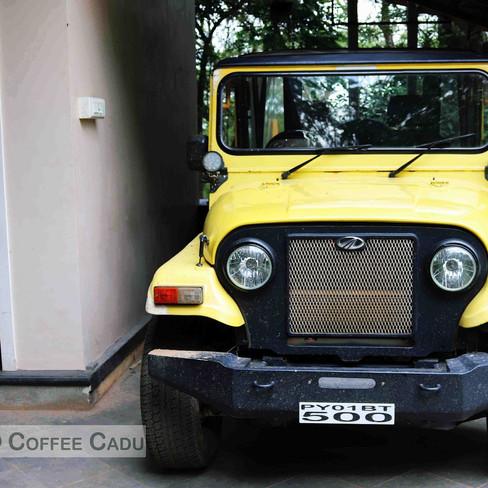 Jeep for Safari