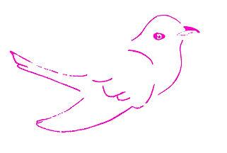 BirdPinkRightWeb.jpg
