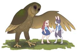 Owl and Rabbit Couple