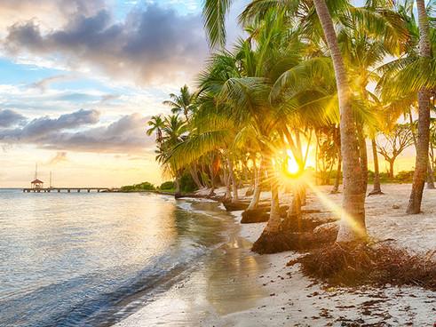 Guadaloupe-Islands-Bahamas.jpg