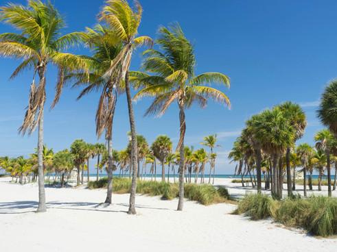 Miamis-Best-Beaches.jpg