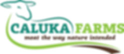 Caluka Logo.jpg