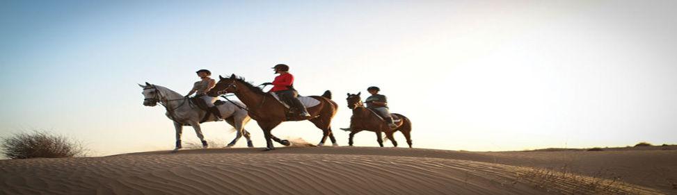 Horse Riding in Dubai.jpg