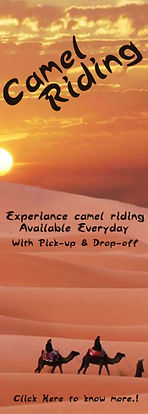 Camel Deal.jpg