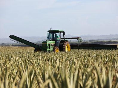 Põllumajandustehnika