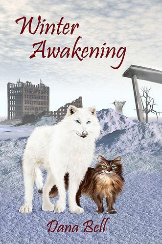 WinterAwakening