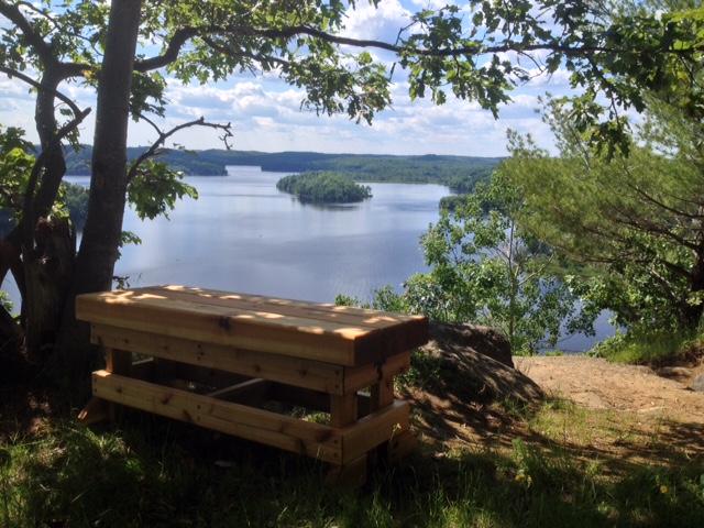 Beefy Cedar Benches