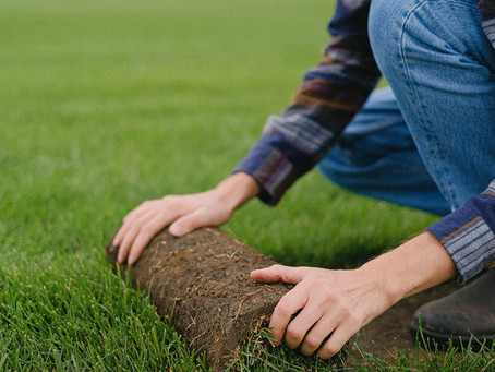 How do you lay turf?