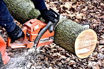 husqvarna chainsaw tree surgery kent arb