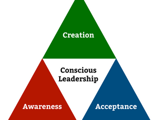 Bryan's Quick & Dirty Guide to Conscious Leadership