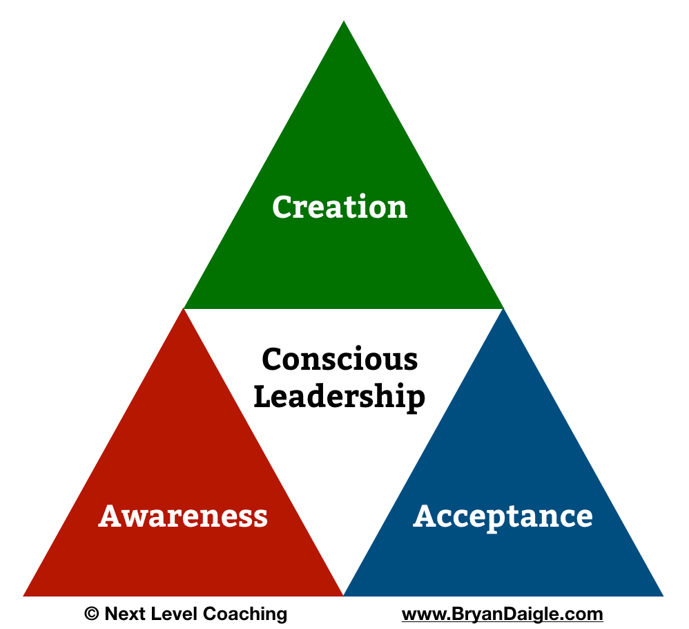 Conscious Leadership Coaching Triangle