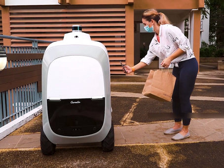 3D Printed Autonomous Robot Increases Delivery Efficiency in Singapore