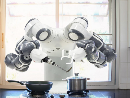 What will this two-handed kitchen robot do first: poison us, or take our jobs?