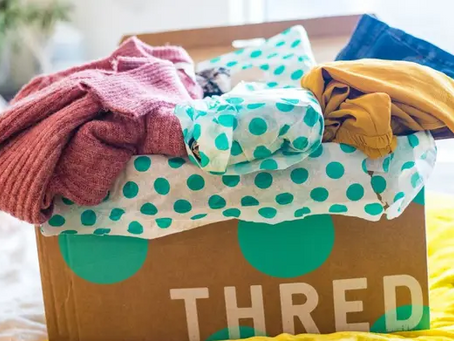 ThredUp reports strong Q2 revenue growth ahead of European expansion