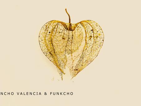 Colectivo Colombia presenta: El Cascarón, bajo la producción de Juancho Valencia