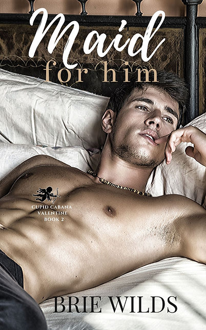 Maid for Him Book 2.jpg