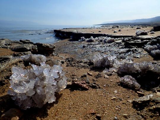 גבישי הליט שנשתמרו במפרץ נסתר לחופו של ים המלח בקרבת שפך נחל אוג