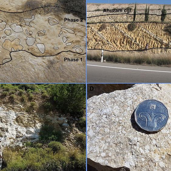 רצף הסלעים מגיל איאוקן מאוחר עד אוליגוקן בשפלת יהודה- סדימנטים שהובלו מהרי יהודה המתרוממים אל אגן הלבנט דרך מערכת תעלות
