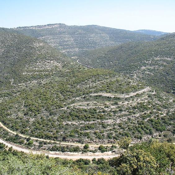 יחסי טקטוניקה, אקלים ותהליכי פני שטח בהרי יהודה/סיורים גיאולוגיים 2021