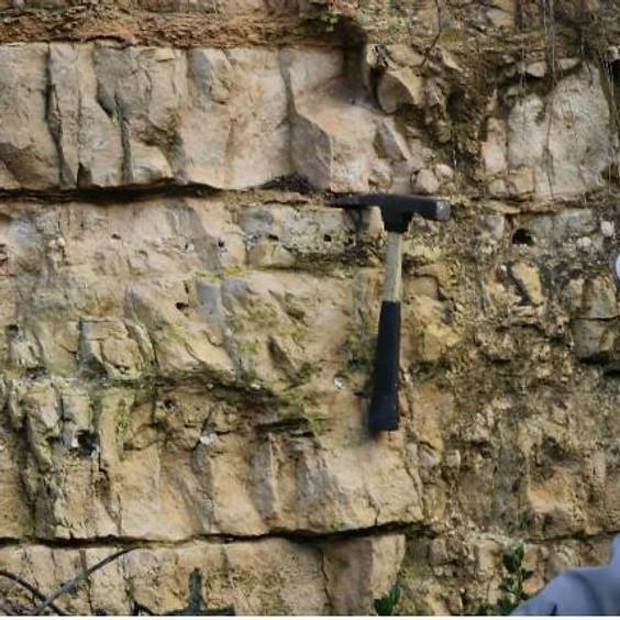 הרי יהודה בדגש תופעות ליתולוגיות המלוות את יצירת הפלטפורמה הקרבונטית בקרטיקון