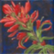 m b timothy 6 5-18-17 8x8.jpg