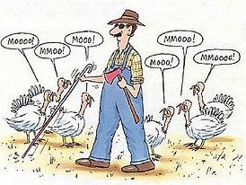 thanksgiving-funny-58b8d6cd5f9b58af5c8ee