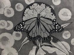 Small world (Monarch on milkweed)