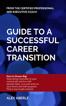 Guide to a Successful Career Transition