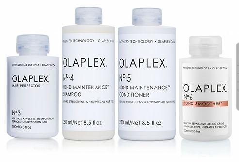 Olaplex Home.jpg