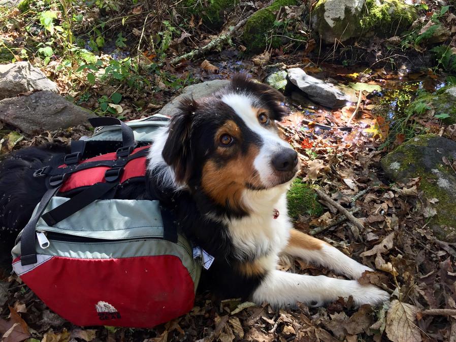hiking partner Mariah
