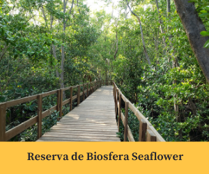 Reserva de Biosfera Seaflower.png