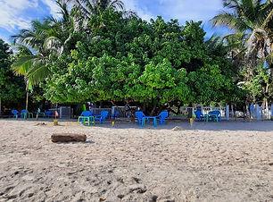 The Grog Rocky Cay.jpg