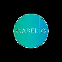 caselio-logo-350x350.png