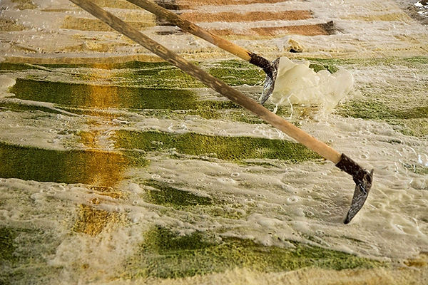 Lavaggio tappeti genova, lavaggio tappeti orientali, lavaggio tappeti persiani, lavaggio tappeti sintetici, lavaggio tappeti manuale, lavaggio tappeti ad acqua, lavaggio delicato tappeti