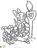 Peter-Rabbit-coloring.jpg