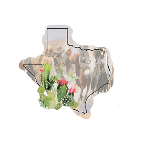 Texas (1).png