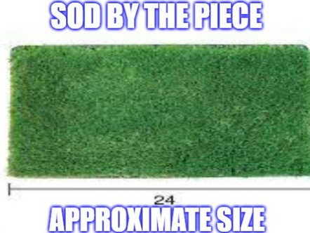Sod Shack Locations with Fresh Sod Today