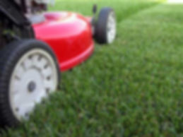 how-to-mow-your-lawn-1.jpg